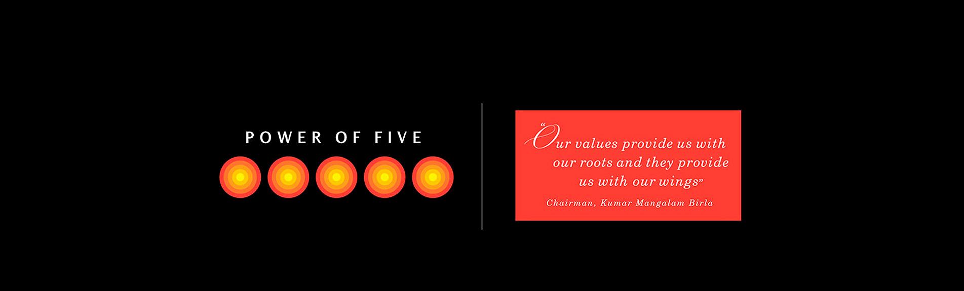 visions and values aditya birla group