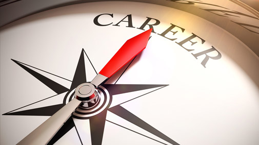 Charting a career path